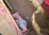 Мужское-женское от 23.05.18 фото